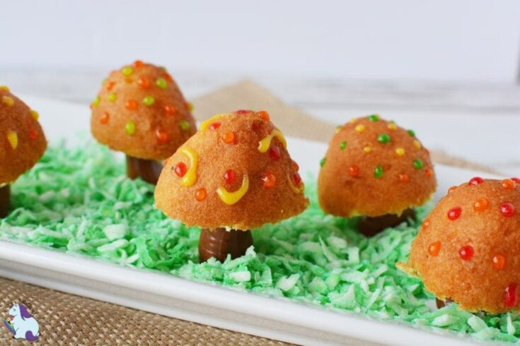 Donut holes and Tootsie Rolls - Fairy Toadstool treats