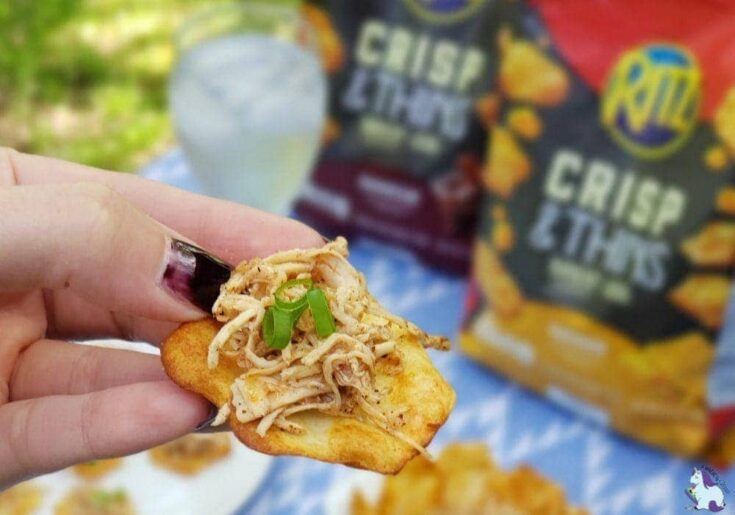 Pulled chicken recipe for the perfect backyard snack!