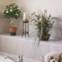 Gorgeous bath tub area