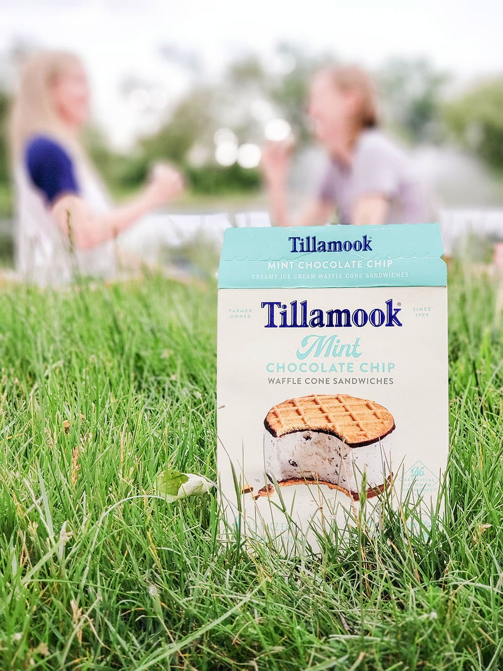Box of Tillamook with people having a picnic in the background.