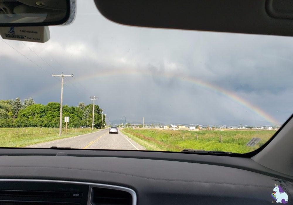 Montana Rainbows