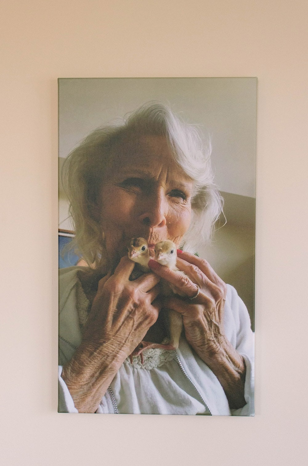Gram and her turkeys on a canvas print