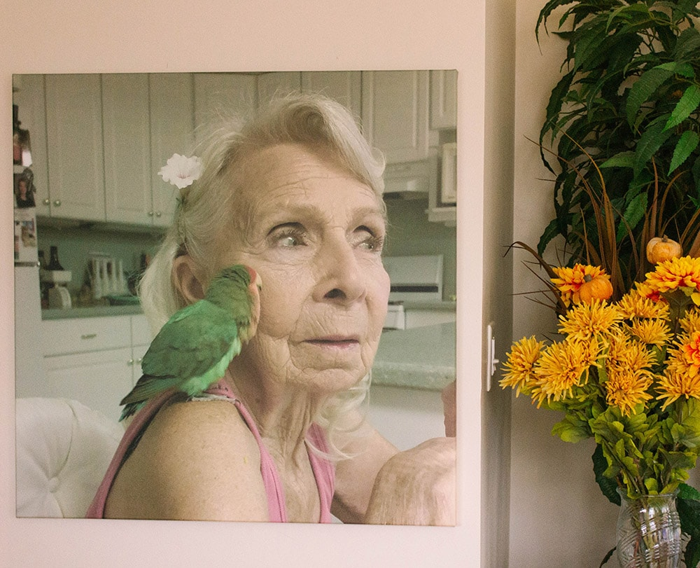 Gram and her lovebird in a canvas print