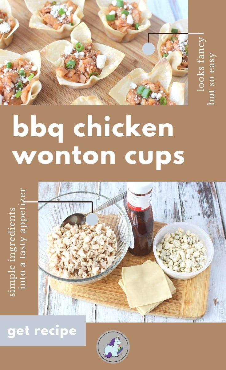chicken wonton appetizers and ingredients needed to make them