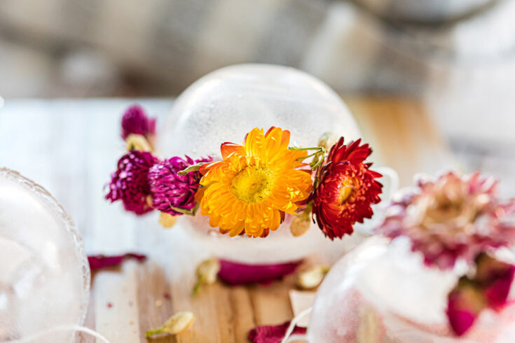 Clear tea orb with flowers around it.
