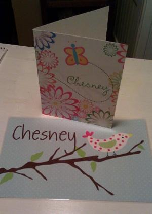 Chesney Folder
